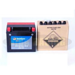Bateria Tecnium BTX12-BS...